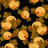 Seamless pattern of branches with leaves gooseberry. vector illu Stock Images