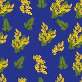 Seamless pattern with branches and leaves of Mimosa on blue. Background. Spring yellow flowers. Vector illustration vector illustration