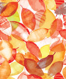 Seamless pattern of bright autumn leaves in grunge style. Stock Photos
