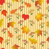 Seamless pattern with bright autumn leaves. Stock Image