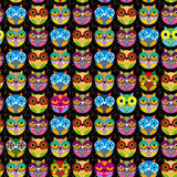 Seamless pattern with bright colored owl on a black background. Vector Stock Photo