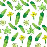 Seamless pattern of bright cucumber whole and chunks. Cucumber seamless pattern. Vegetable background.  Cucumber whole and sliced pieces. Vector illustration Royalty Free Stock Photography