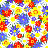 Seamless pattern bright flowers. Seamless pattern bright summer flowers. Vector background Royalty Free Stock Images