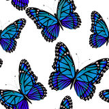 Seamless pattern with bright monarch butterflies Royalty Free Stock Image