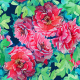 Seamless pattern of bright watercolor roses Stock Photos