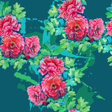 Seamless pattern of bright watercolor roses Royalty Free Stock Image