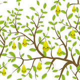 Seamless pattern Brown branches with green leaves, green pear fruits  Royalty Free Stock Images