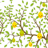 Seamless pattern Brown branches with green leaves, lemon lime fruits Kawaii funny muzzle with pink cheeks and winking eyes, pastel Royalty Free Stock Photo