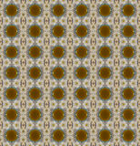 Seamless pattern of brown circle and white flower Royalty Free Stock Photography