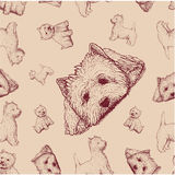 Seamless pattern with brown dogs Royalty Free Stock Image