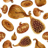 Seamless pattern of brown dried figs painted with watercolour Royalty Free Stock Images
