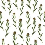 Seamless pattern with brown and green herbs. Watercolor illustration. vector illustration