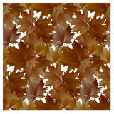 Seamless pattern brown maple leaves.  Royalty Free Stock Photo