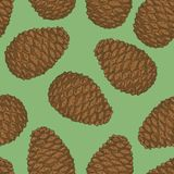 Seamless Pattern with Brown Pine Cone. On a Green Background Stock Photo