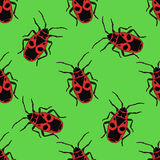 Seamless pattern with bug-soldier or Firebug .    hand-drawn bug-soldier, Firebug . Vector Royalty Free Stock Photo