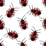 Seamless pattern with bug-soldier or Firebug .    hand-drawn bug-soldier, Firebug . Vector. Seamless pattern with bug-soldier or Firebug . Pyrrhocoris apterus Royalty Free Stock Photo