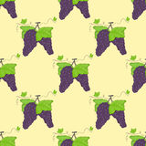 Seamless pattern bunches of grapes and green leaves. Royalty Free Stock Photos