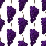 Seamless pattern of bunches of purple grapes Stock Image