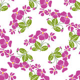 Seamless pattern with bunches of violet flowers in retro style. Royalty Free Stock Photo