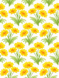 Seamless pattern with bunches of yellow flowers Royalty Free Stock Photography