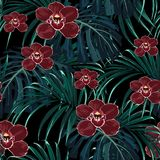 Seamless pattern, burgundy orchid flower and green exotic palm monster leaves. stock illustration