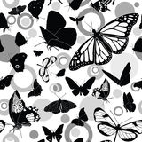 Seamless pattern with butterflies. Seamless black-and-white  pattern with butterflies Stock Images
