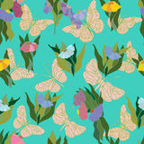 Seamless pattern with butterflies. Floral seamless pattern with decorative butterflies royalty free illustration