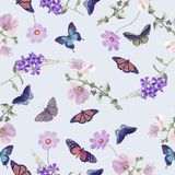 Seamless pattern of butterflies and flowers Royalty Free Stock Image