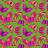 Seamless pattern with butterflies on green Royalty Free Stock Photos