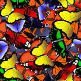 Seamless pattern from butterflies stock illustration