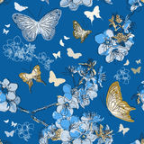 Seamless pattern with with butterflies Stock Photos
