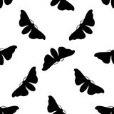 Seamless pattern with butterfly Bombyx mori. Royalty Free Stock Photos