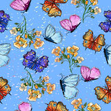 Seamless pattern with butterfly and flowers Stock Image