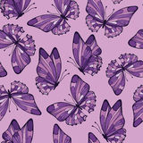 Seamless pattern with butterfly. Lilac color. Stock Image