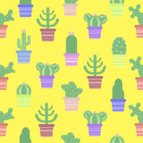 Seamless pattern with cacti in a pot. Icon of cactus flower. Stock Photos