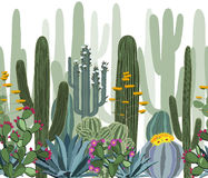 Seamless pattern with cactus, agave, and opuntia. Stock Photography