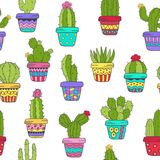 Seamless pattern with cactus in color Stock Photography