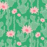 Seamless pattern with cactus Stock Photography
