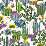 Seamless pattern with cactus plants, blue agaves, and prickly pear. Royalty Free Stock Photos