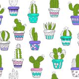 Seamless pattern with cactus Royalty Free Stock Images