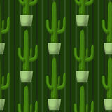 Seamless pattern with cactus. Royalty Free Stock Image