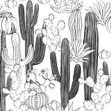 Seamless pattern with cactus. Wild cacti forest. Vector illustration royalty free illustration