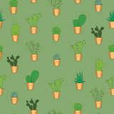 Seamless pattern with cactuses Royalty Free Stock Images
