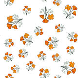 Seamless pattern with californian poppy Stock Photo