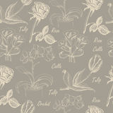 Seamless pattern with calla lily, tulip, orchid, and rose Stock Photography