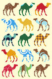 Seamless pattern with camels Royalty Free Stock Image