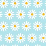 Seamless Pattern With Camomile Flowers On Blue Background Beautiful Floral Ornament. Vector Illustration Stock Photo