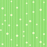 Seamless pattern with camomile. On green background Stock Photo