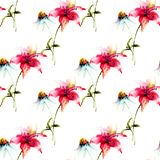 Seamless pattern with Camomile with Lily flowers Stock Photos
