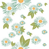 Seamless pattern with camomiles Stock Image